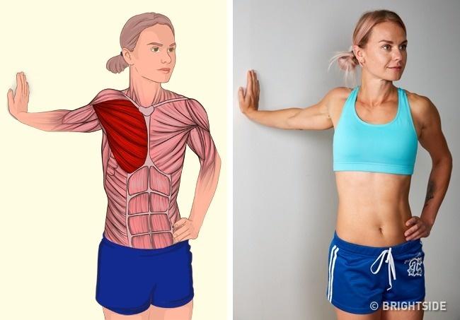 Cơ ngực được kéo căng toàn bộ nhờ động tác nghiêng người chống tay vào tường.