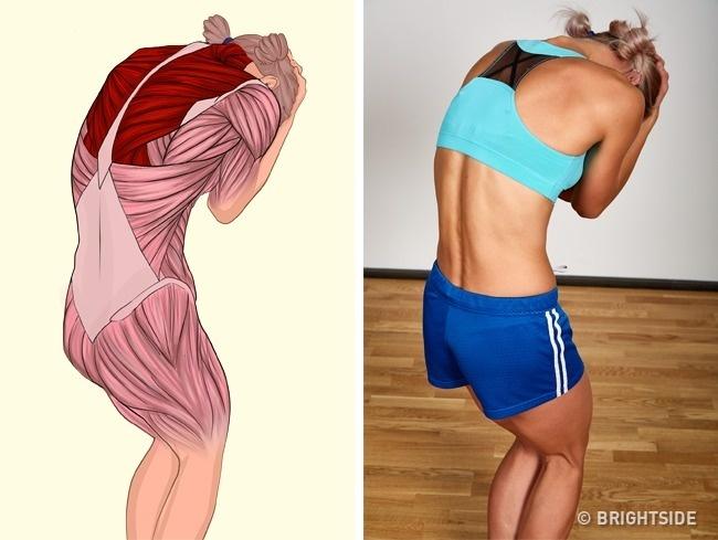 Động tác cúi đầu nhìn rất đơn giản nhưng lại giúp kéo giãn toàn bộ cơ lưng, mông, đùi và bắp tay.