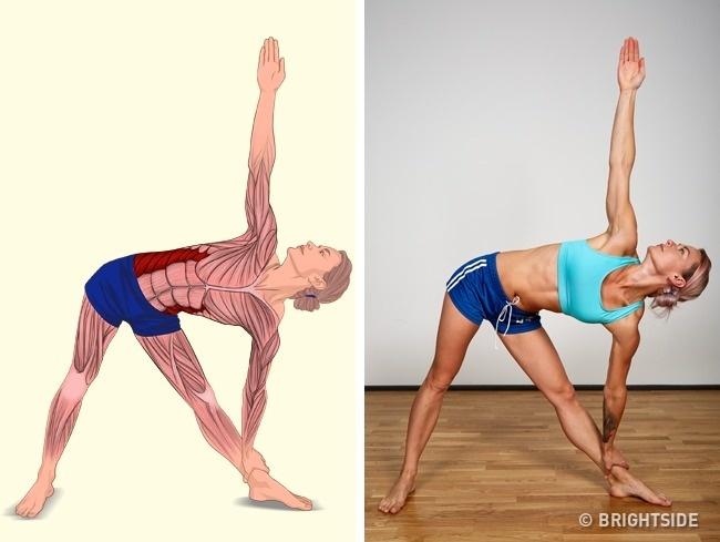 18 động tác kéo giãn giúp cơ thể vừa hết đau mỏi vừa thon thả